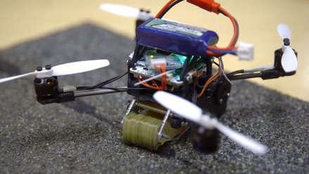 Inspirados en las avispas, científicos desarrollan un dron capaz de mover cargas pesadas