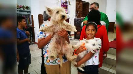Bendicen a mascotas en iglesia de Huanchaco