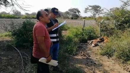 Tumán | Denuncian a administración judicial por hallazgo de fosas con caballos enterrados