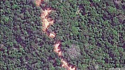 El impacto que deja la tala selectiva en la Amazonía del Perú