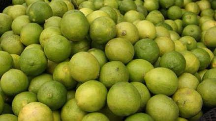 Incrementa precio de los limones en Trujillo
