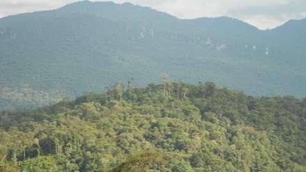 Orquídeas y cavernas en la nueva área de conservación Monte Puyo