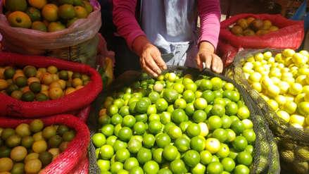 Saco de limón que costaba 60 soles hoy se cotiza a 200 soles en Lambayeque