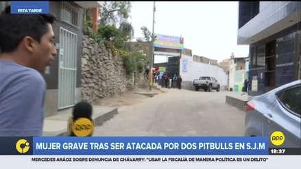 Mujer quedó desfigurada tras sufrir ataque de perros en San Juan de Miraflores