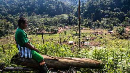 Asháninkas, el pueblo indígena que vive entre narcos, invasores y terroristas