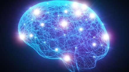 Científicos identifican redes cerebrales