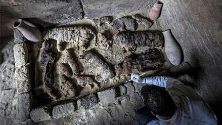 Egipto   Descubren siete tumbas de faraones con gatos y escarabajos momificados