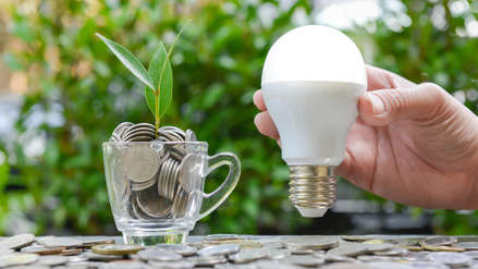 ¿Cuánto puedo ahorrar si uso bombillas LED?