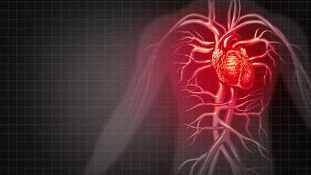 Consumir más fibra en la dieta diaria disminuye el riesgo de padecer enfermedades cardíacas