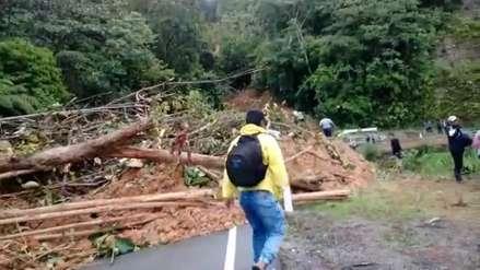 Video | Fuertes lluvias provocan desbordes y derrumbes en la región San Martín