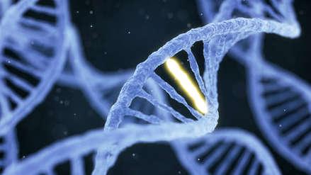 Cronología | Los hitos y precedentes de la modificación genética en humanos