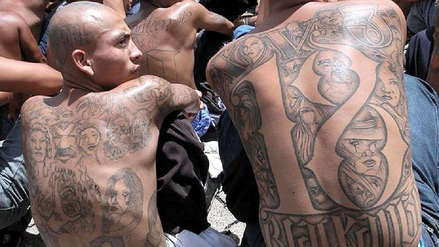 Pandillas salvadoreñas recibieron 11,200 condenas desde 2016