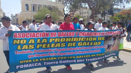 Criadores protestan contra proyecto de ley que prohíbe peleas de gallos