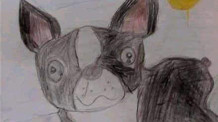 Familia busca a mascota que contribuye en la terapia de un niño con parálisis cerebral
