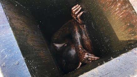 Un hombre quedó atrapado en el conducto de ventilación de un restaurante por dos días