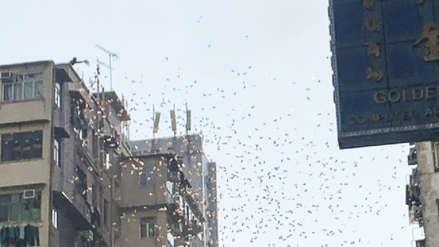 Hombre subió a un edificio y lanzó dinero sobre un barrio pobre de una ciudad