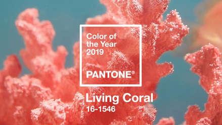 Living Coral, el color que será tendencia en el 2019