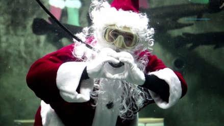 Fotos | Conoce al Papá Noel acuático que sorprende a visitantes de un acuario en México