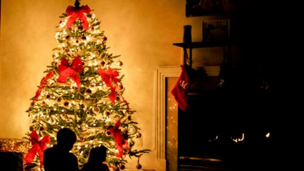¿Árbol de Navidad? Conoce en dónde nace esta popular costumbre