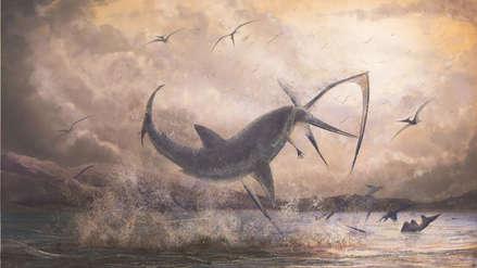 Un diente fosilizado revela un enfrentamiento prehistórico entre un tiburón y un pterosaurio