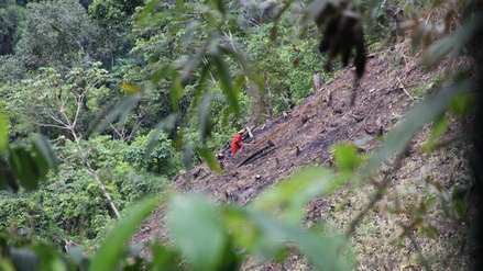 Deforestación se dispara y avanza sobre los bosques del parque Bahuaja Sonene