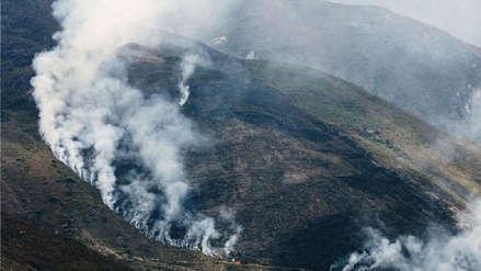 Incendios forestales: otro año de negligentes e insensatos