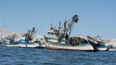 Las 5 millas marinas merecen más cuidado y mejores investigaciones