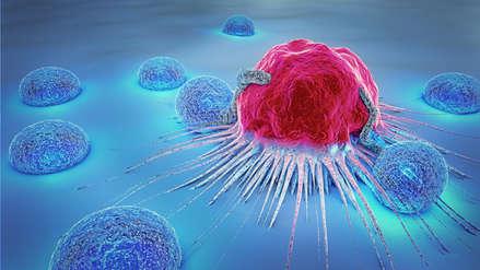Investigación convirtió células cancerígenas de metástasis en grasa inofensiva