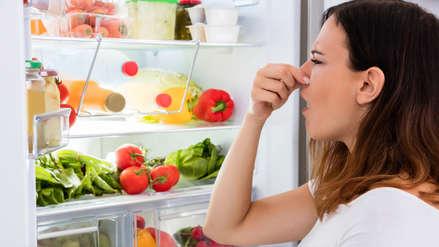 Verano 2019: ¿qué tan importante es la refrigeración para conservar los alimentos?