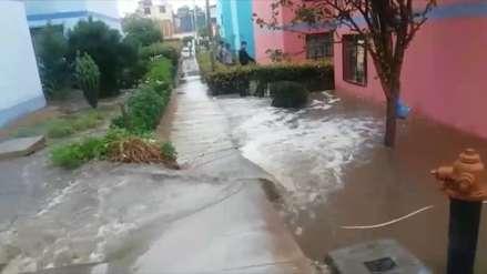 Fuertes lluvias inundaron colegios, casas y granjas en Tacna [video]