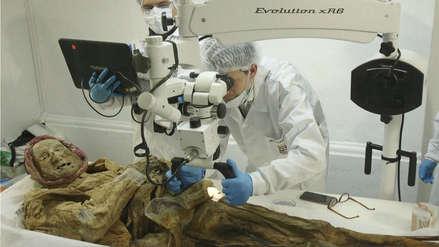 La momia ecuatoriana que permitirá conocer cómo una enfermedad llegó hasta Europa