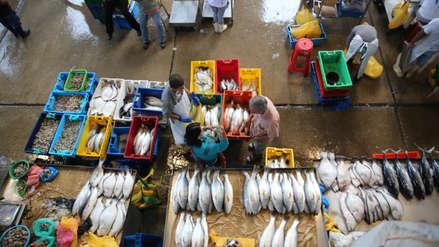 Casi un tercio de los alimentos marinos que consumimos es importado