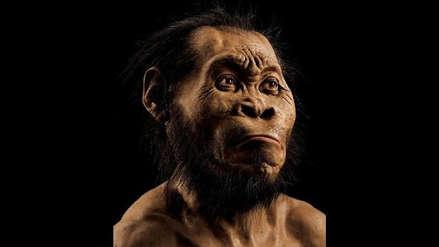 Cáncer | El caso más antiguo data de hace 1.7 millones de años