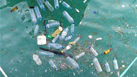 ¿Cómo afecta el plástico de los océanos en nuestra vida diaria?