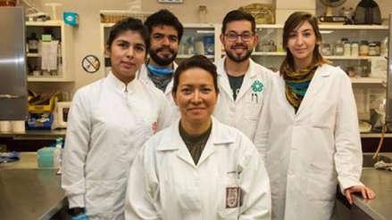 La cura del virus del papiloma humano está cerca: médicos lo eliminaron al 100% en 29 pacientes