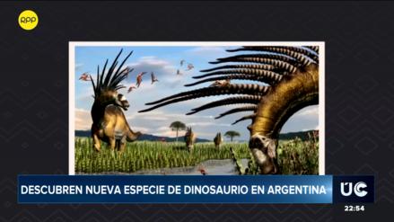 Descubren en Argentina dinosaurio que utilizaba sus espinas gigantes para defenderse