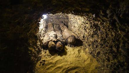 Egipto | Arqueólogos encontraron una tumba con 50 momias del periodo helenístico