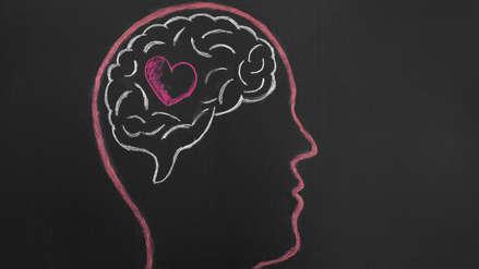 San Valentín | El amor no está en el corazón, sino en los neurotransmisores del cerebro