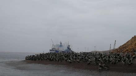 INFORME | Puerto de Paracas: ¿Qué es lo que más preocupa a los ambientalistas?