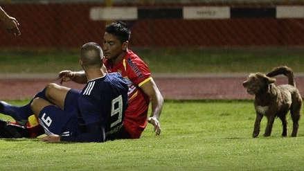 Sporting Cristal: Jugador de Sport Huancayo rechazó acusaciones de mordedura de Emanuel Herrera