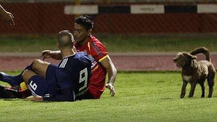 Carlos Benavides: