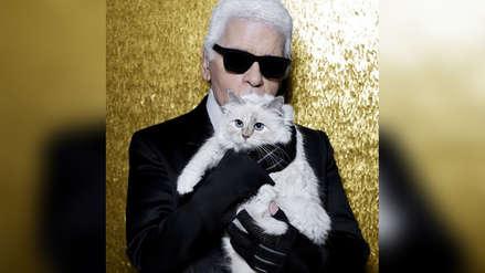 Karl Lagerfeld: ¿Su millonaria herencia será para su gata Choupette?