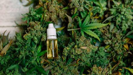 Cannabis medicinal: los aciertos y los vacíos del nuevo reglamento