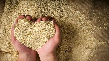 Quinua: el cereal ancestral del Perú es la mejor opción para el desayuno de escolares