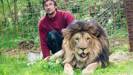 Hombre muere atacado por uno de los leones a los que criaba en casa como mascotas