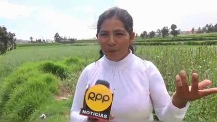 La historia de Elena Viza, la obrera agredida en Arequipa, que trabaja desde los 14 años [Video]
