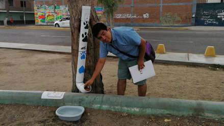 Vecinos colocan dispensador de comida para alimentar a animales callejeros en parque