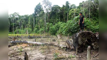 Las comunidades shipibos-conibos han logrado detener la destrucción de sus bosques por medio de drones