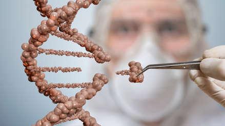 Científicos piden moratoria en experimentos de edición genética de seres humanos