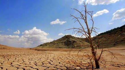 Día mundial del agua: el cambio climático y la deforestación del Amazonas están secando América Latina